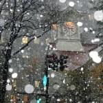 Năm nay tuyết đầu mùa rơi trễ kỷ lục trên đảo Hokkaido