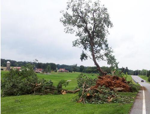 130610-tornado-maryland-along Woodbine Road in Howard County