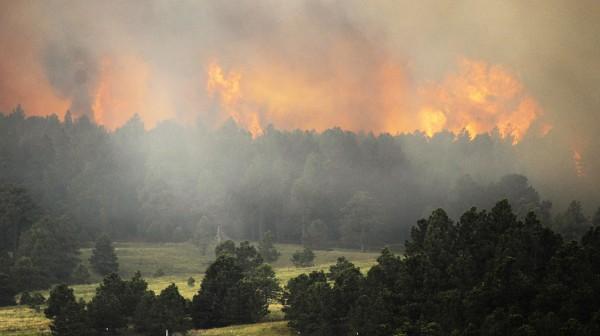 fires132way