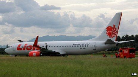 Indonesia plane-hit-cow-2