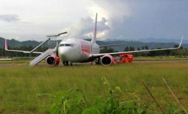 Indonesia plane-hit-cow