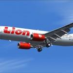 Máy bay đụng… bò ở Indonesia