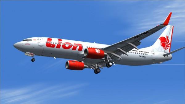 Lion 737-800