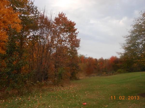 131102-ha-maryland-autumn-resize-02