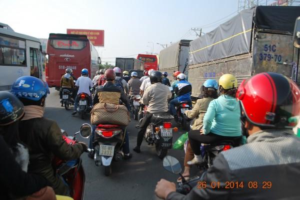 140126-phphuoc-thanhhoa-longan-taomo-03_resize