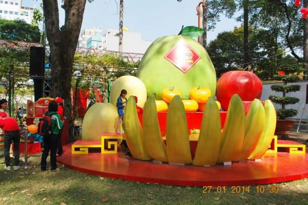 140127-phphuoc-hoihoaxuan-taodan-018_resize