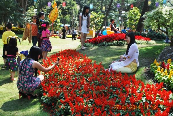 140127-phphuoc-hoihoaxuan-taodan-047_resize