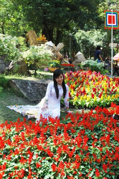140127-phphuoc-hoihoaxuan-taodan-048_resize