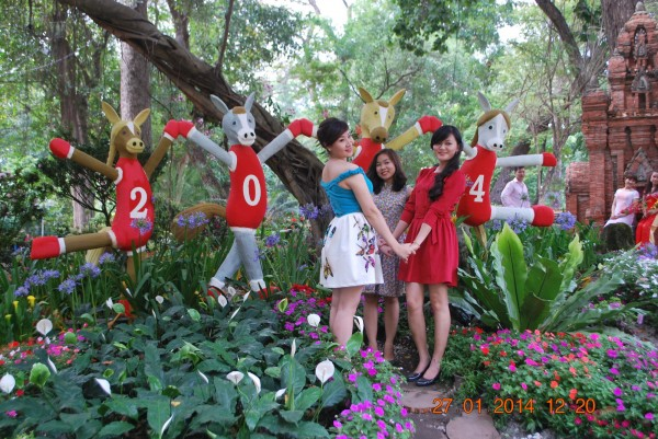 140127-phphuoc-hoihoaxuan-taodan-140_resize