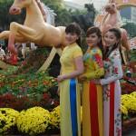 VIDEO CLIP: Đường Hoa Nguyễn Huệ Saigon Tết Giáp Ngọ 2014