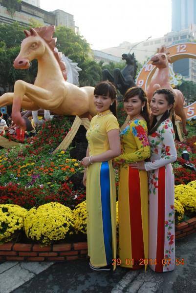 140129-phphuoc-duonghoa-nguyenhue--sg-tetgiapngo-018_resize