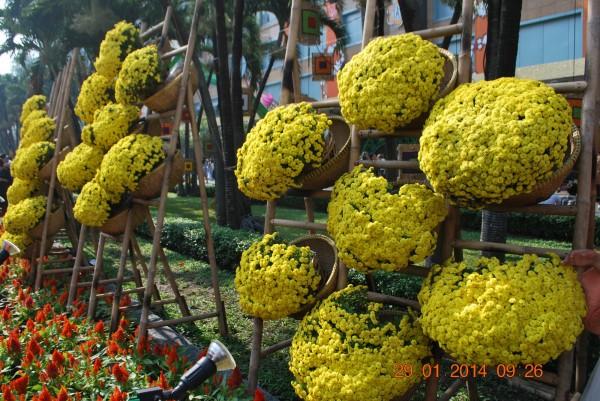 140129-phphuoc-duonghoa-nguyenhue--sg-tetgiapngo-178_resize
