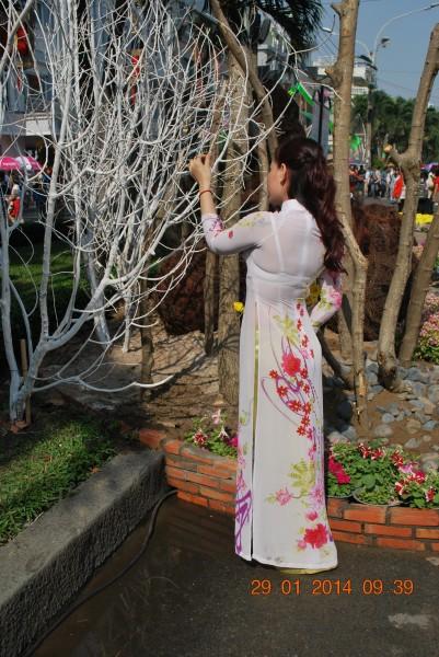 140129-phphuoc-duonghoa-nguyenhue--sg-tetgiapngo-207_resize