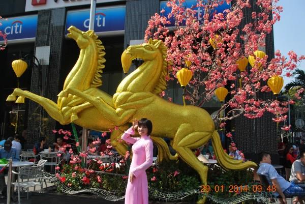 140129-phphuoc-duonghoa-nguyenhue--sg-tetgiapngo-219_resize