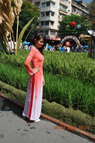 140129-phphuoc-duonghoa-nguyenhue--sg-tetgiapngo-279_resize