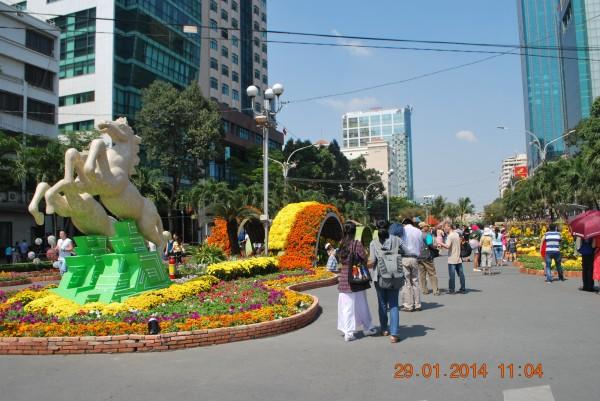 140129-phphuoc-duonghoa-nguyenhue--sg-tetgiapngo-340_resize