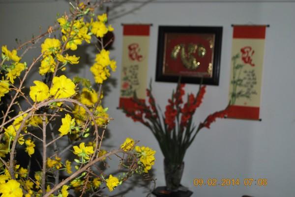 140209-phphuoc-mung10giapngo-cungthantai-05_resize