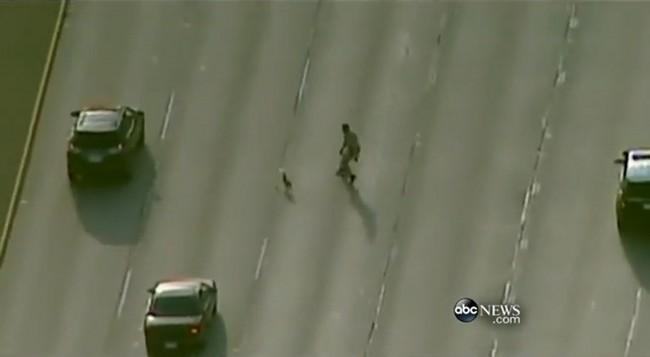 140507-dog-runs-highway-california