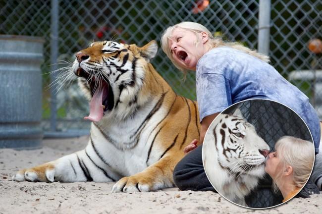 tiger-people-03