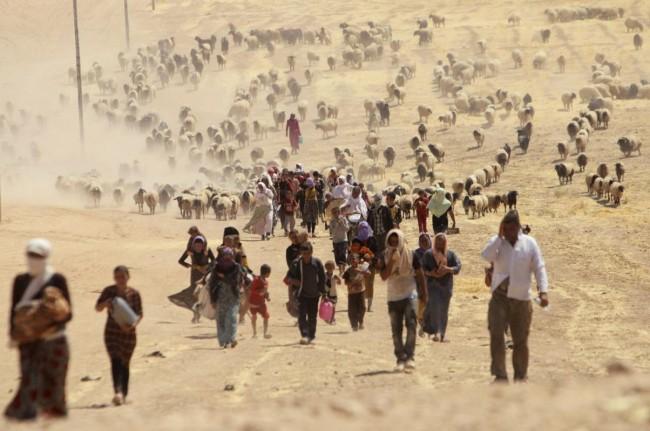 140810-iraq-yazidi-refugees-09