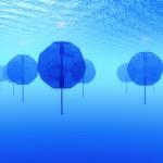 Dự án nuôi cá trong những quả cầu đại dương khổng lồ