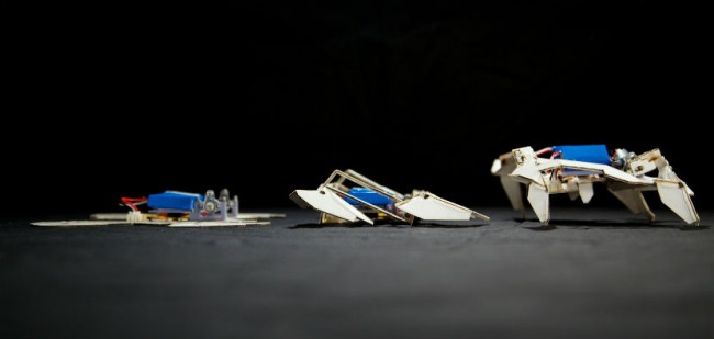 robot_origami