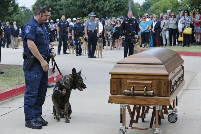 dog-funeral-6