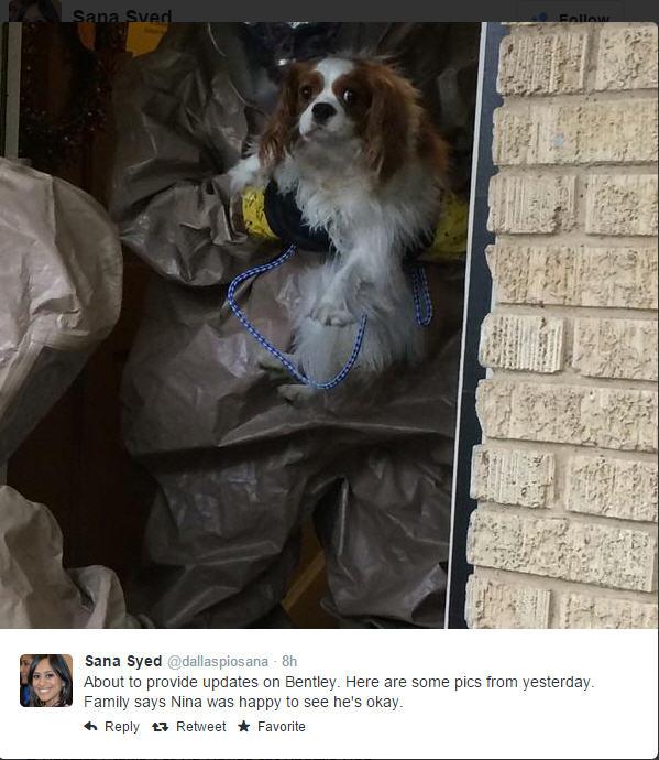 141015-ebola-nina=pham-dog-01