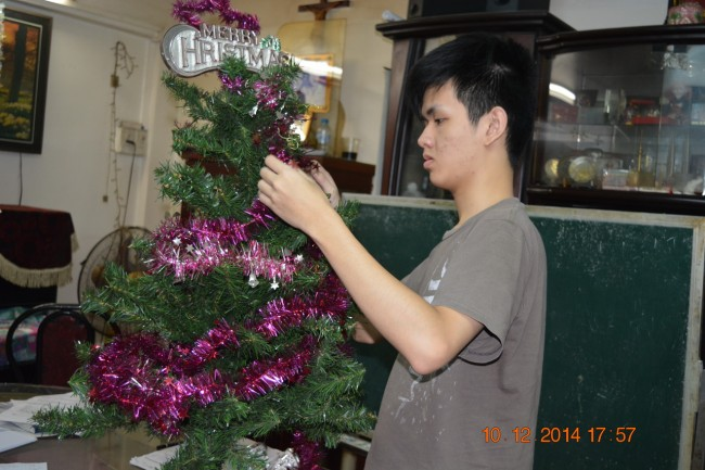 141210-anhphu-cay-noel-2014-02_resize