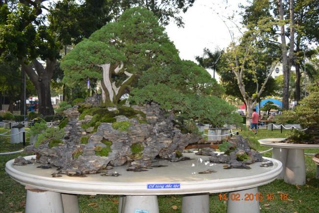 150214-tetatmui-hoihoaxuan-taodan-028_resize