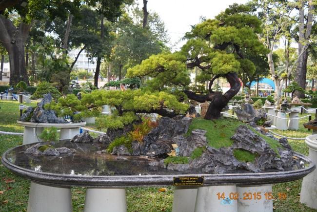 150214-tetatmui-hoihoaxuan-taodan-029_resize