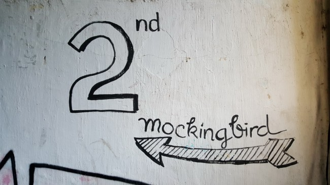 150711-mocking-bird-coffee-05_resize_resize