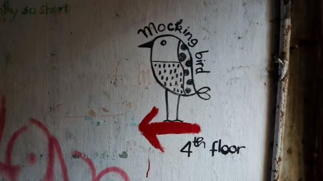 150711-mocking-bird-coffee-06_resize_resize