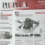 Nỗi buồn IP Việt