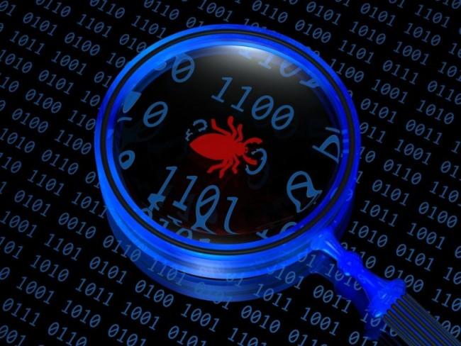 computer-bugs