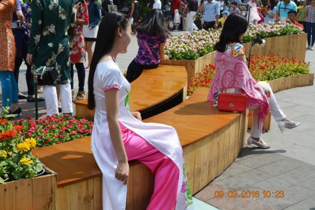 160209-tetbinhthan-duonghoa-nguyenhue-094_resize