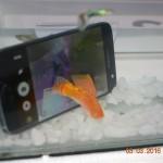 VIDEO: Test khả năng chống nước của Samsung Galaxy S7 edge