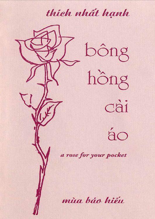 bonghong-caiao-nhathanh