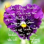 Chia buồn cùng em, Thong Nguyen