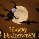Halloween nói chuyện ma