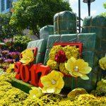 PHÓNG SỰ ẢNH: Đường Hoa Nguyễn Huệ Saigon Tết Đinh Dậu 2017 (P 2/6)