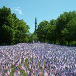 Nhớ ngày Memorial Day ở Mỹ