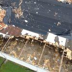Bão Harvey đi qua North Carolina nhìn từ drone