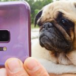 BuzzFeed và The Dodo ứng dụng tính năng Super Slow-mo của Samsung Galaxy S9 và S9+ vào video clip
