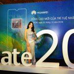 Hai smartphone Huawei Mate20 và Mate20 Pro bán ở Việt Nam