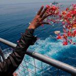 Lại tiếp tục tìm thêm 3 ngày nữa với chuyến bay JT610 rơi trên Biển Java