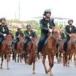 Ra mắt kỵ binh Việt Nam