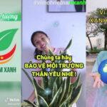 Những xu hướng sáng tạo trên TikTok Việt Nam tháng 8-2020
