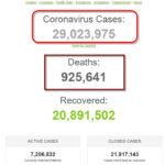 Thế giới đã có hơn 29 triệu người được ghi nhận nhiễm coronavirus SARS-CoV-2