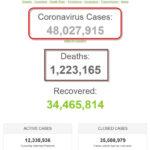 Số bệnh nhân COVID-19 trên thế giới đã vượt mốc 48 triệu người